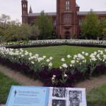 Smithsonian Gardens, Washington, USA
